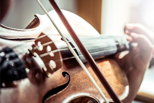 Geigenlehrer in Lehrer Aktiv Shweiz