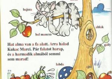 Onlinekurs Ungarisch mit Sarolta